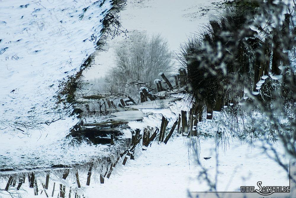 winter2015-08